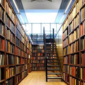 Библиотеки Мышкино